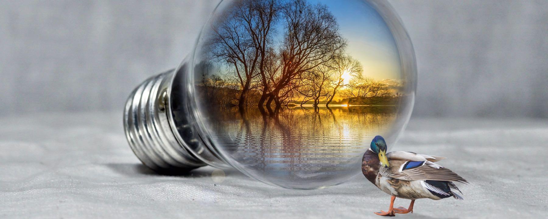 WPK3 – Natur-Umwelt-Technik